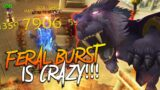 FERAL BURST IS CRAZY!!! Feral Druid  PvP – 2v2 w/ Viewers (World of Warcraft: Shadowlands 9.0)