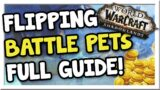 Make 500k – 1 Million Flipping Pets Across Realms! | Shadowlands | WoW Gold Making Guide