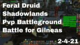 World of Warcraft Shadowlands Feral Druid Pvp Battleground, Battle for Gilneas, 2-4-21